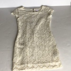 Lined stretch lace dress
